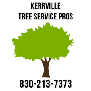 kerrville tree care